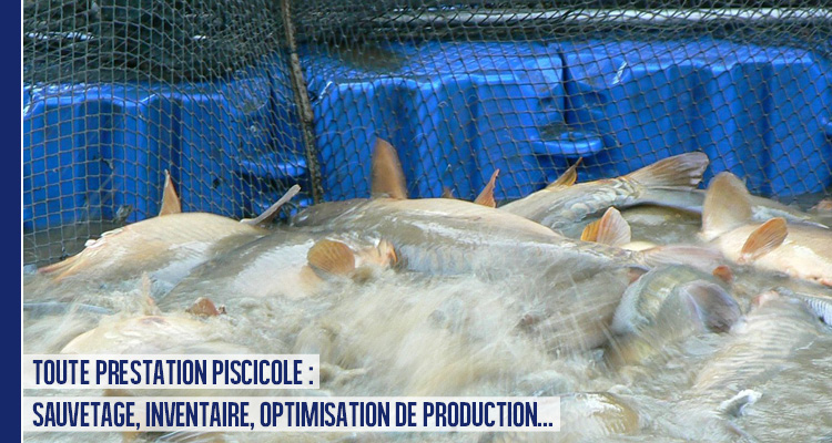 sauvetage,inventaire, optimisation de production